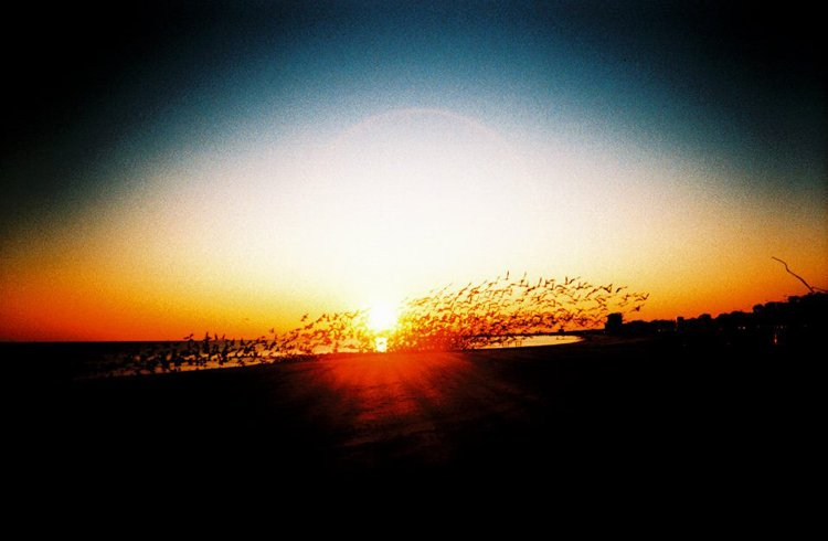 Gulfport Sunrise