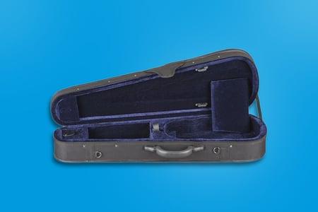 beginner violin case