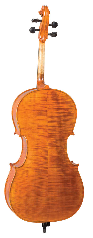 hoffmann_cello_back.jpg